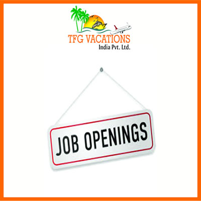 Work for a Travel Website for Few Hours - Bhopal